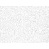 Потолочная плита ОАЗИС НГ OASIS NG Board 600x600x12
